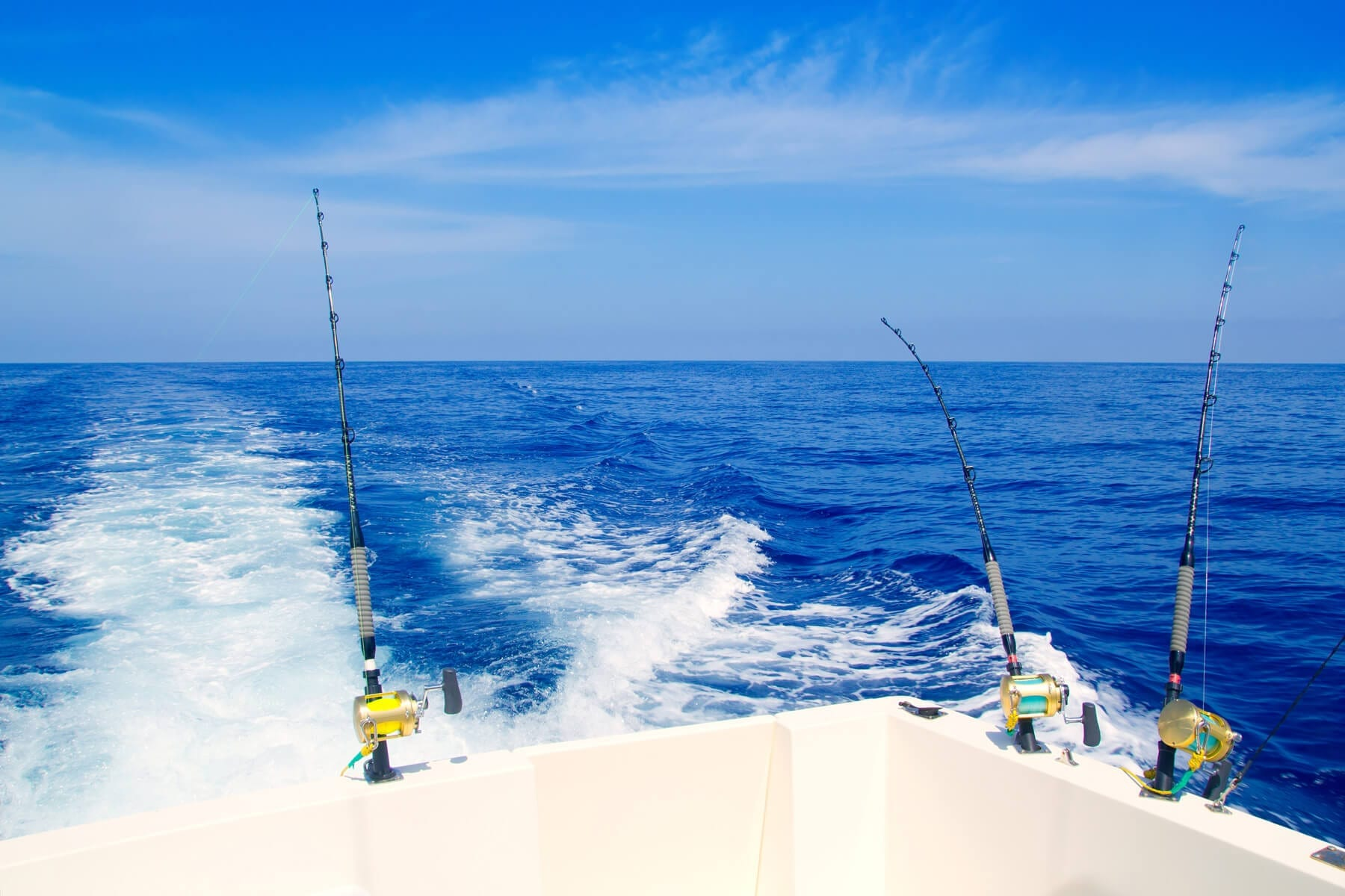 gulf-of-mexico-fishing