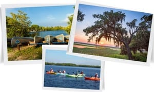 Naples Florida's Natural Wonders